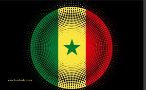 SENEGAL_BUSINESS_LANGUAGE